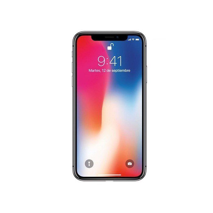 Apple iPhone X 4G 256GB space gray