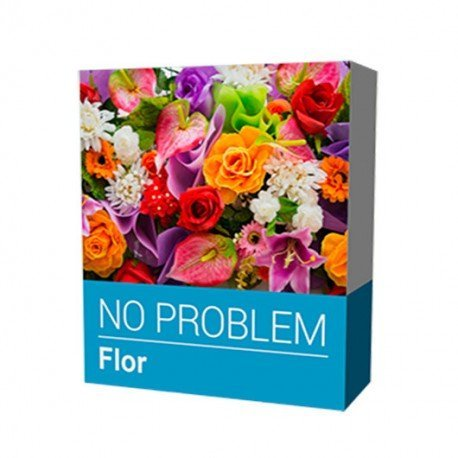 TPV SOFTWARE NO PROBLEM FLOR